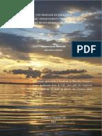 Dissertacaofim.pdf