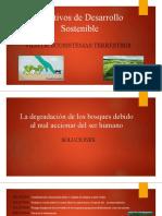 Objetivos de Desarrollo Sostenible- Emprendimiento (3).pptx