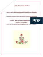 apostila-florais-de-bach-na-pratica1593035440