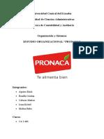 Trabajo semestral PRONACA (2)