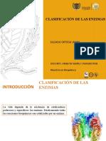 Clasificacion de las enzimas.pptx