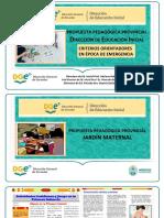 Ed. SUPERIOR-PROPUESTA PEDAGÓGICA PROVINCIAL DEI-2020