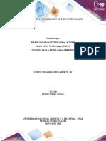 Fase 4 Focalizacion de Ejes Curriculares Trabajo Colaborativo 1