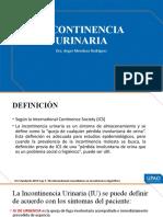 Mehu108_U4_T5_incontinencia urinaria
