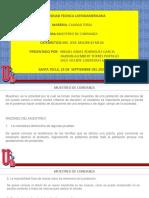 Muestreo de confianza (2).pdf