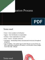 6.-Fertilization-Process.pptx