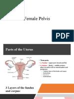5.-Female-Pelvis.pptx