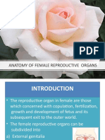 4.-Female-Reproductive-System