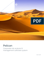 Pelican_ERM_software_executive_overview