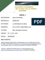 Mitocondria_Equipo1_Isaac_Hernández_Miranda_300820