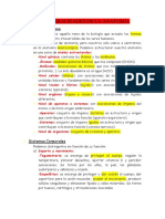 wuolah-free-Generalidades-anatomia