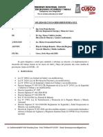 INFORME N°51 Plan de trabajo Remoto