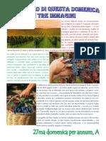 Vangelo in immagini - 27ma domenica per annum A.pdf