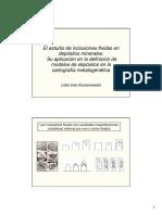 12 00 Korzeniewski_Inclusiones fluidas.pdf