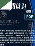 seguros 245.pdf
