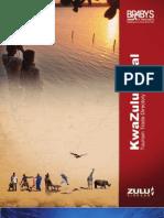 Kzn Tourism 2010