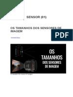 Sensor (01)