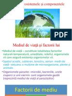 9C, Ecosistemele ;i componentele lor