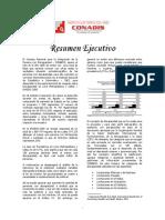 CONADIS EHODIS Resumen Ejecutivo 2005