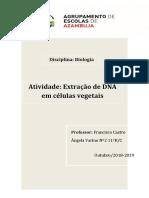 Ângela Varino Nº2 11ºB-C.docx