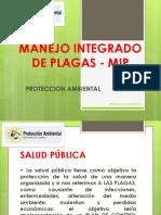INTRODUCCION MIP PA
