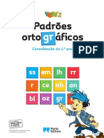 topp2_pad_ort (1).pdf