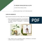 Evidencia Proceso tecnologico del cultivo.docx