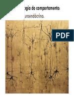 Sistema Neuroendócrino e o Estresse