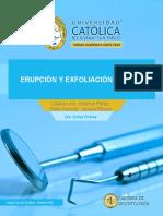 Erupción y Exfoliación Dental