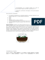 MICRO AMBIENTE LECHOSA.docx