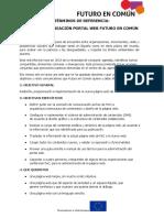 TDR-rediseño-y-creación-portal-web-FeC