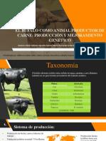 Articulo de Bufalos.pptx
