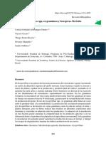 Azospirillum gramineas