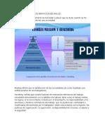 5. SATISFACCION EN LOS SERVICIOS DE SALUD.docx