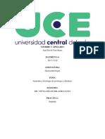 Gastro tarea 2 (1).pdf