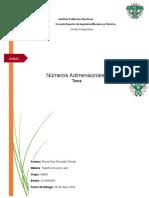 Rivas San German Deneb Numeros Adimensionales.docx.docx