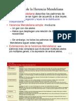 clase 4 extensiones del Mendelismo1.pdf
