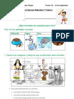 Guía Ciencias 1º 02-16 sept.
