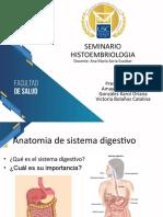 1. Correcciones GA Tubo digestivo