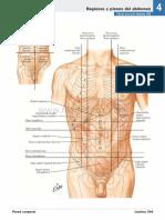 atlas_de_anatomia_humana_netter_6ed_medilibros.com_140