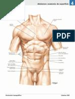 atlas_de_anatomia_humana_netter_6ed_medilibros.com_139