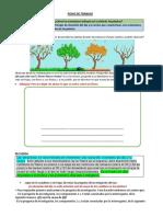 FICHA DE TRABAJO (7).pdf