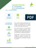 CFBP_Brochure-institutionnelle_ENERGIE-BUTANE-PROPANE-MOTEUR-DE-L-ECO-NATIONALE_VF