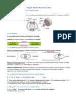 Rappels Machine à courant continu_2.pdf