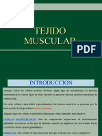 (2) TEJIDO MUSCULAR[1]