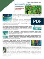 Tradiciones orales de las naciones shipibo y uitoto.pdf
