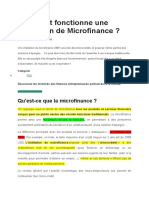 Comment fonctionne une Institution de Microfinance