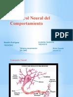 El control Neural del Comportamiento.pptx