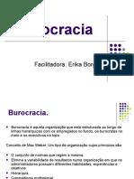 Burocracia e Estruturalismo