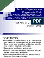 Apresentacao_Impactosambientais1